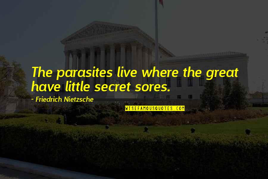 You My Little Secret Quotes By Friedrich Nietzsche: The parasites live where the great have little