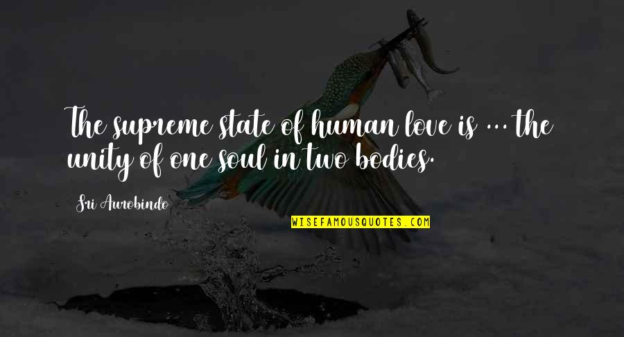 You My Soulmate Quotes By Sri Aurobindo: The supreme state of human love is ...