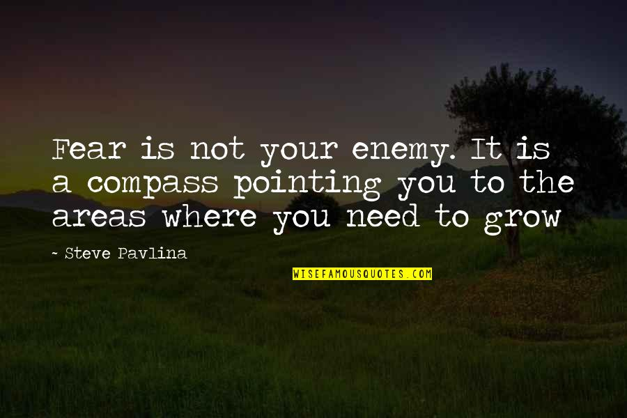 You Need To Grow Up Quotes By Steve Pavlina: Fear is not your enemy. It is a