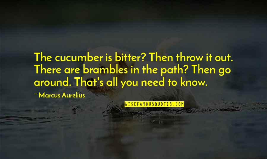 You Need To Know Quotes By Marcus Aurelius: The cucumber is bitter? Then throw it out.
