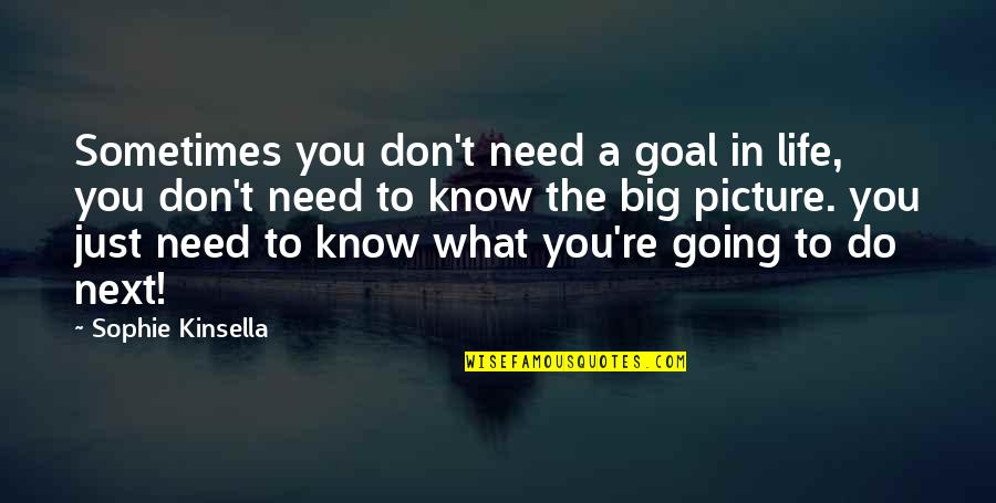 You Need To Know Quotes By Sophie Kinsella: Sometimes you don't need a goal in life,