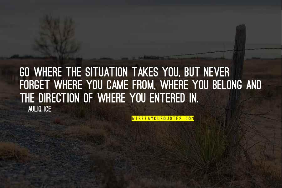 You Never Came Quotes By Auliq Ice: Go where the situation takes you, but never