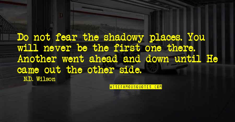 You Never Came Quotes By N.D. Wilson: Do not fear the shadowy places. You will