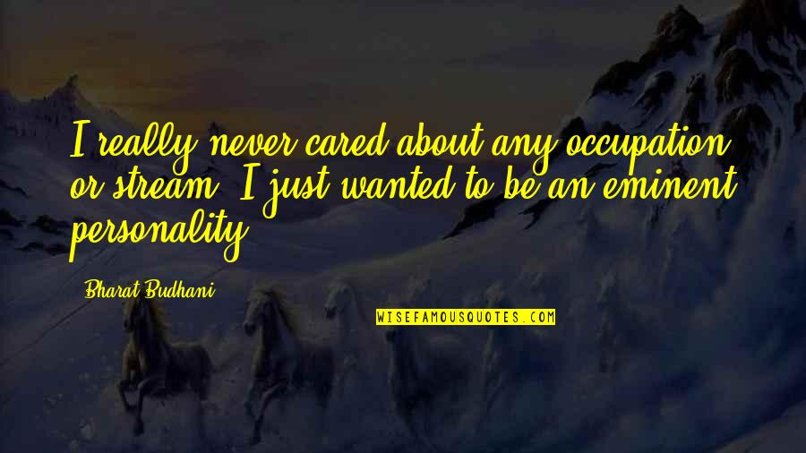 You Never Cared Quotes By Bharat Budhani: I really never cared about any occupation or