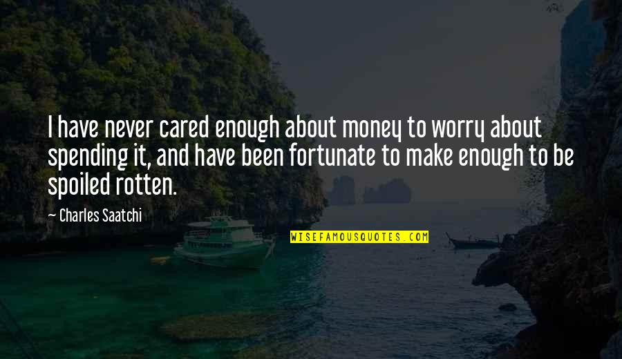 You Never Cared Quotes By Charles Saatchi: I have never cared enough about money to