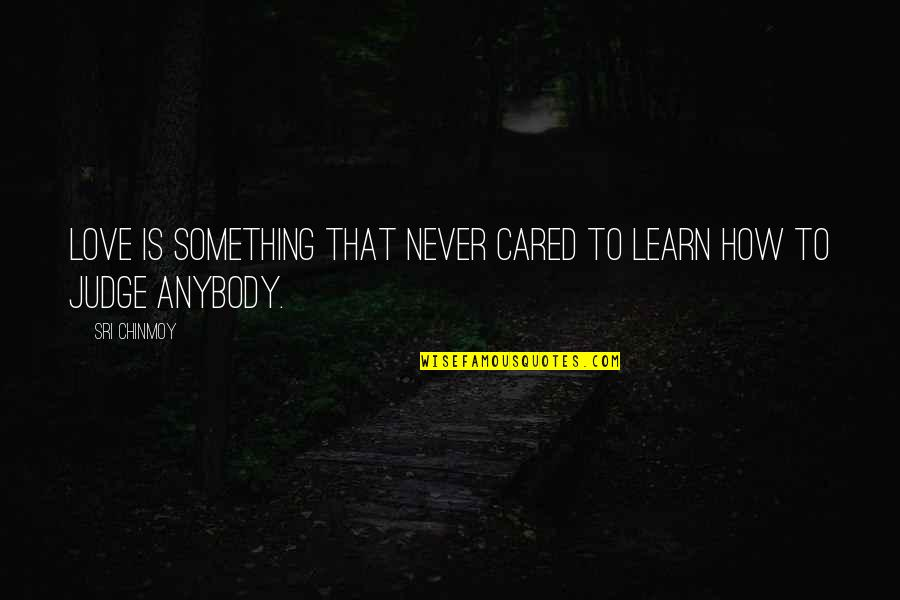 You Never Cared Quotes By Sri Chinmoy: Love is something that never cared to learn