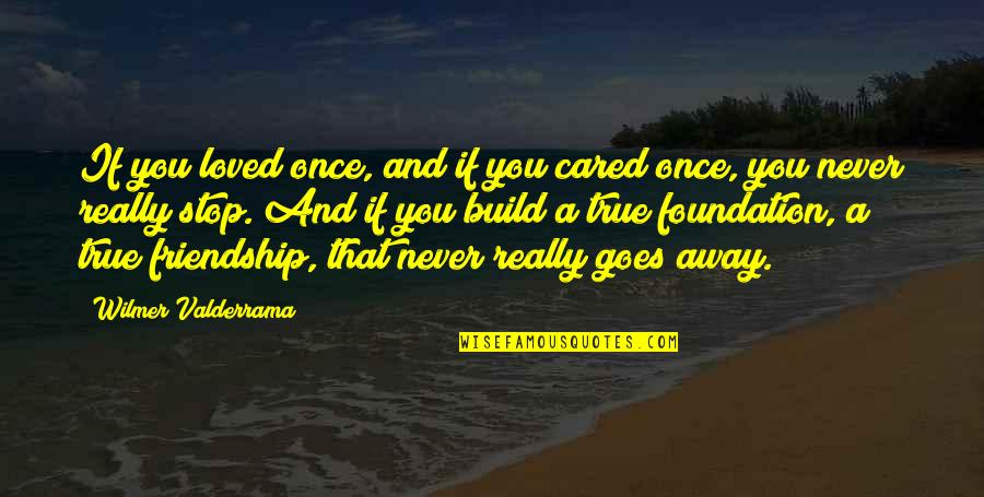 You Never Cared Quotes By Wilmer Valderrama: If you loved once, and if you cared