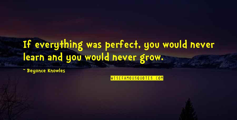 You Never Grow Up Quotes By Beyonce Knowles: If everything was perfect, you would never learn
