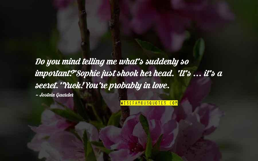 You So Important Me Quotes By Jostein Gaarder: Do you mind telling me what's suddenly so