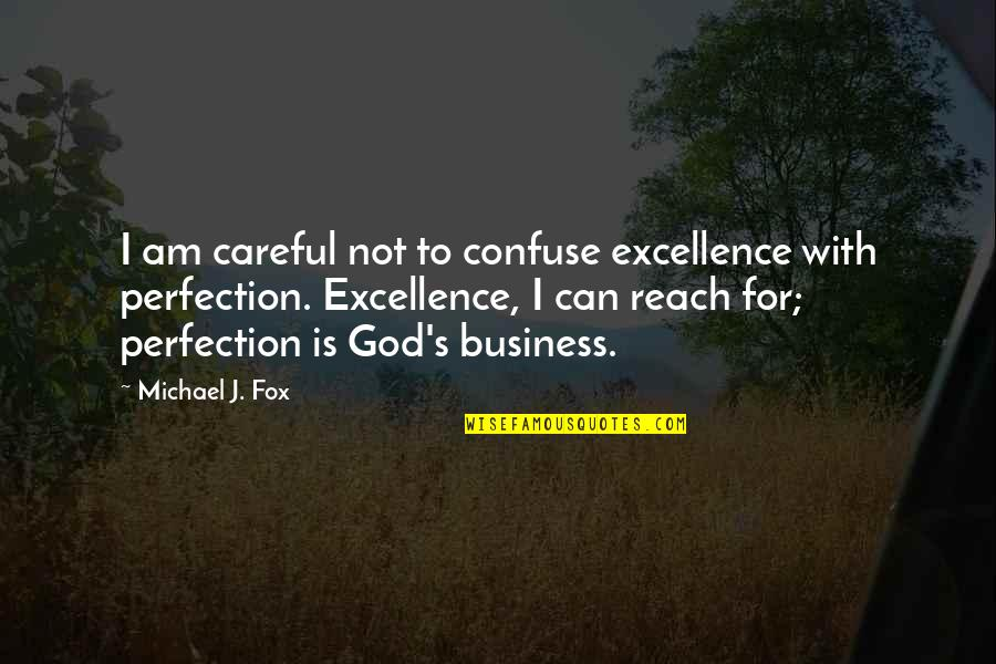 You Taught Me A Lesson Quotes By Michael J. Fox: I am careful not to confuse excellence with