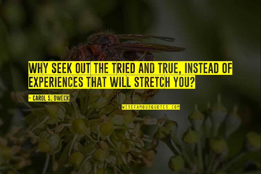 You Tried Quotes By Carol S. Dweck: Why seek out the tried and true, instead