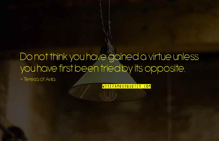 You Tried Quotes By Teresa Of Avila: Do not think you have gained a virtue