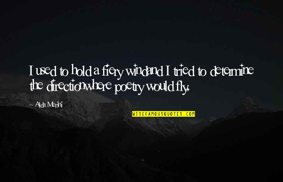 You Tried Your Best Quotes By Alda Merini: I used to hold a fiery windand I
