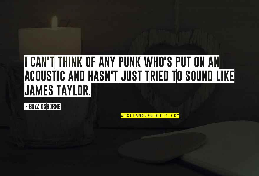 You Tried Your Best Quotes By Buzz Osborne: I can't think of any punk who's put