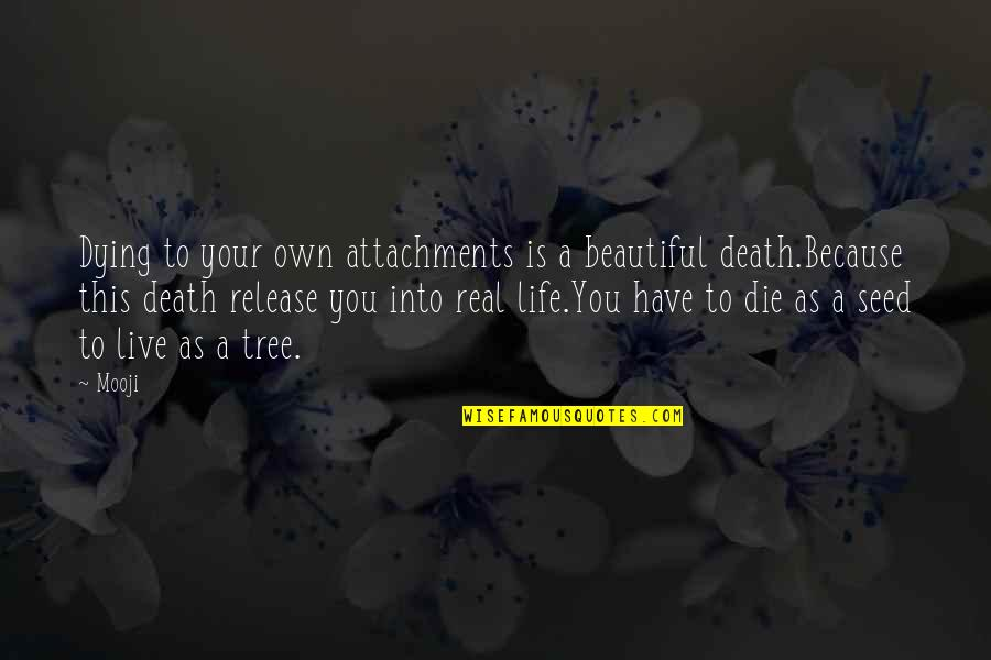 Your Beautiful Life Quotes By Mooji: Dying to your own attachments is a beautiful