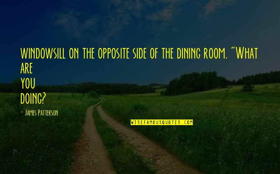 Your Dining Room Quotes By James Patterson: windowsill on the opposite side of the dining