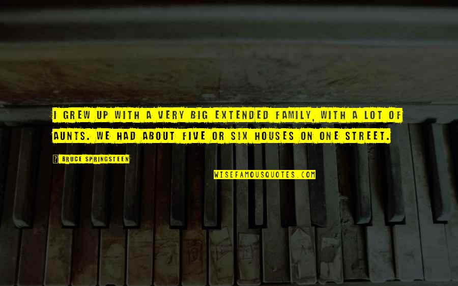 Your Extended Family Quotes By Bruce Springsteen: I grew up with a very big extended