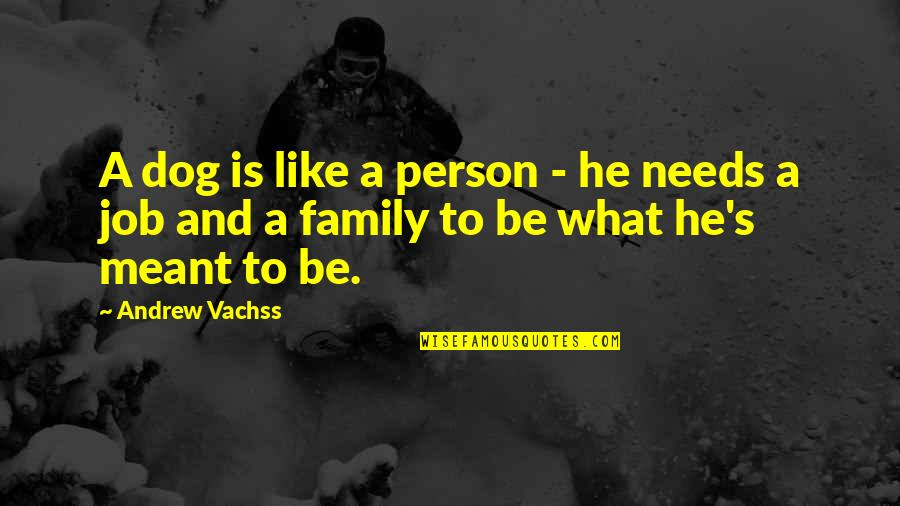 Your Family Needs You Quotes By Andrew Vachss: A dog is like a person - he