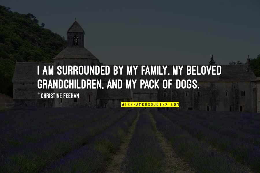 Your Grandchildren Quotes By Christine Feehan: I am surrounded by my family, my beloved