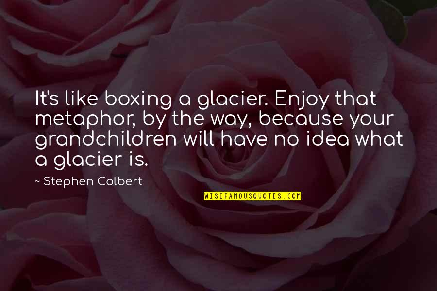 Your Grandchildren Quotes By Stephen Colbert: It's like boxing a glacier. Enjoy that metaphor,