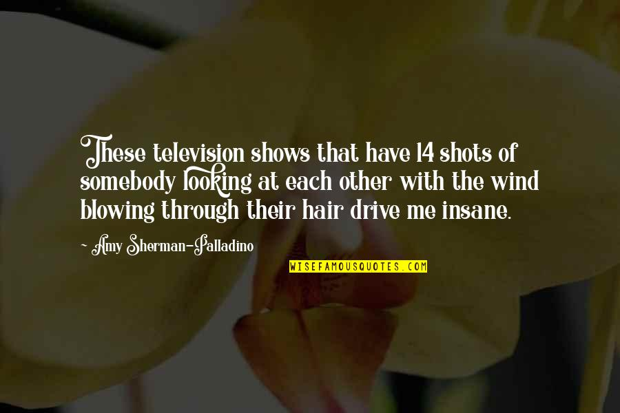 Your Hair Blowing In The Wind Quotes By Amy Sherman-Palladino: These television shows that have 14 shots of