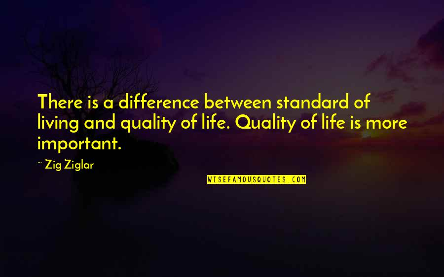 Your Important In My Life Quotes By Zig Ziglar: There is a difference between standard of living