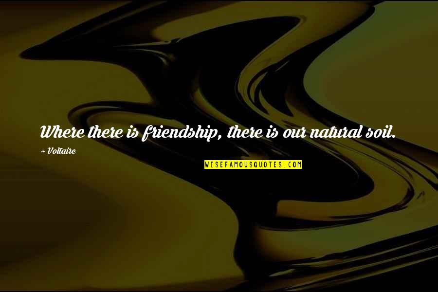 Your Last Day At Work Quotes By Voltaire: Where there is friendship, there is our natural