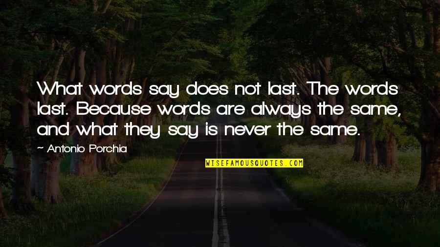 Your Last Words Quotes By Antonio Porchia: What words say does not last. The words