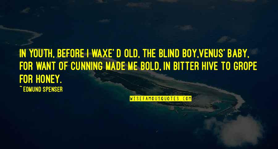 Your My Baby Boy Quotes By Edmund Spenser: In youth, before I waxe' d old, The