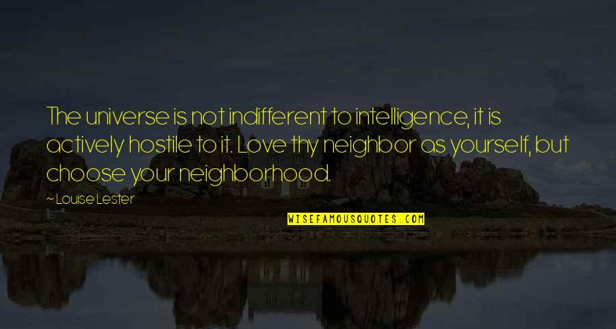 Your Neighborhood Quotes By Louise Lester: The universe is not indifferent to intelligence, it