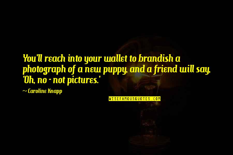 Your New Friend Quotes By Caroline Knapp: You'll reach into your wallet to brandish a