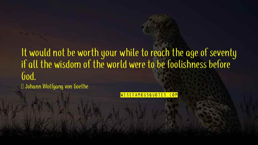 Your Not Worth The Quotes By Johann Wolfgang Von Goethe: It would not be worth your while to