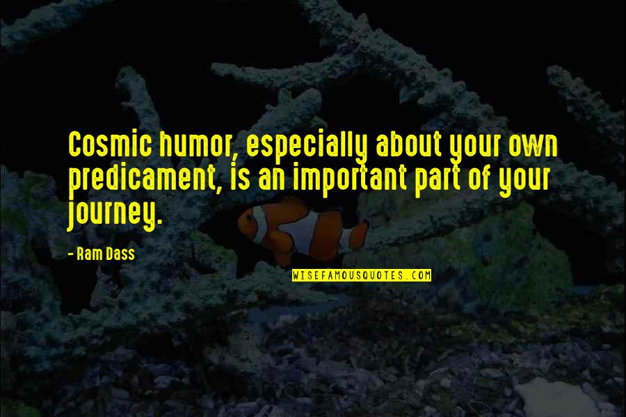 Your Own Journey Quotes By Ram Dass: Cosmic humor, especially about your own predicament, is