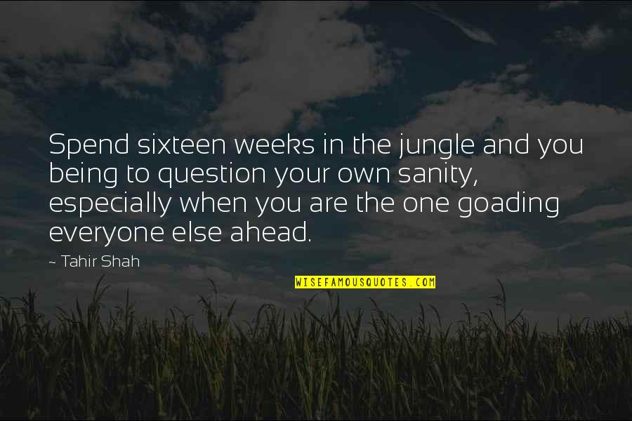 Your Own Journey Quotes By Tahir Shah: Spend sixteen weeks in the jungle and you