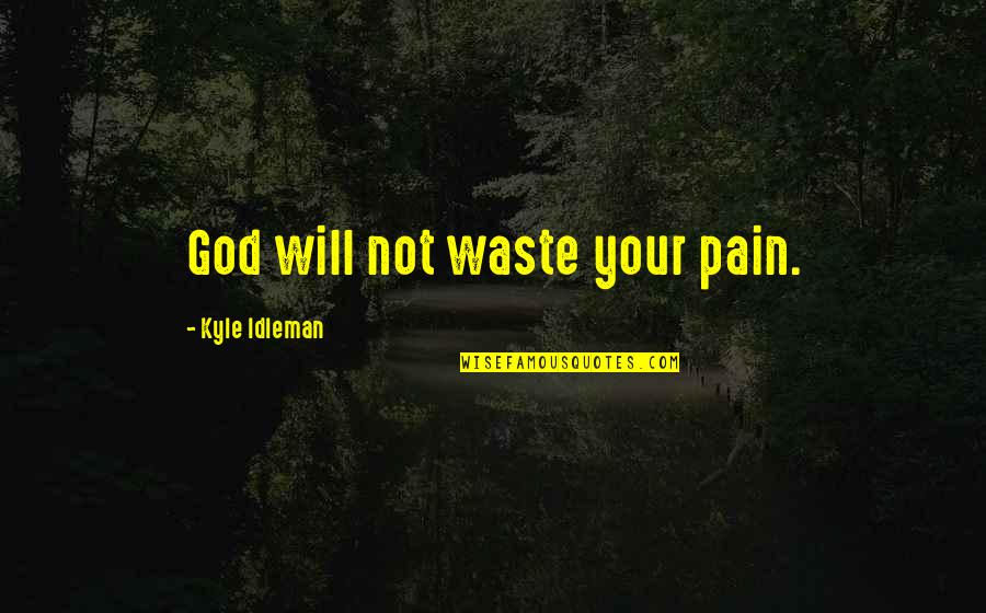 Your Pain Quotes By Kyle Idleman: God will not waste your pain.