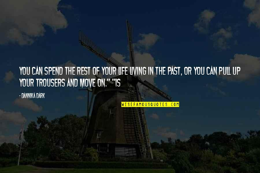 Your Past Life Quotes By Dannika Dark: You can spend the rest of your life