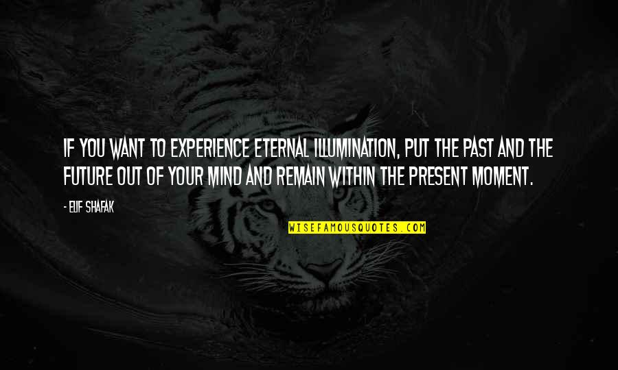Your Past Life Quotes By Elif Shafak: If you want to experience eternal illumination, put
