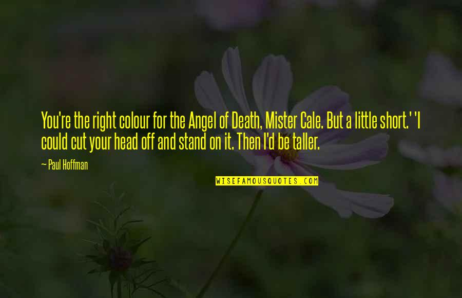 Your Right Hand Quotes By Paul Hoffman: You're the right colour for the Angel of