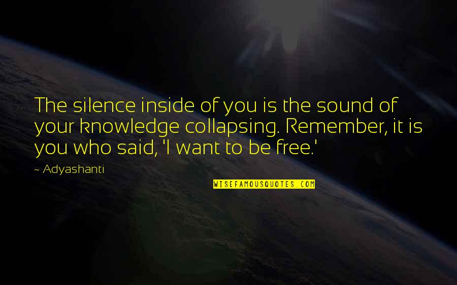 Your Silence Quotes By Adyashanti: The silence inside of you is the sound