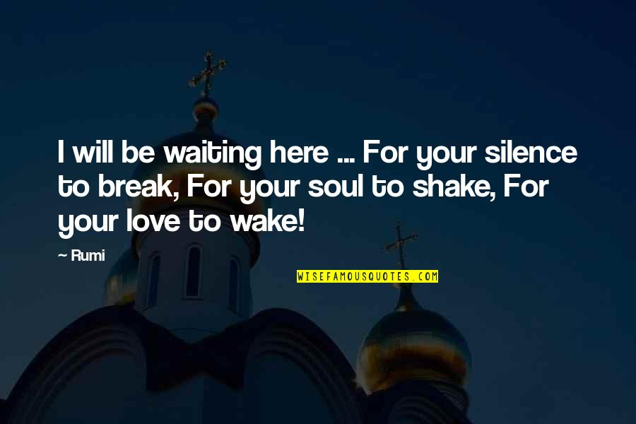 Your Silence Quotes By Rumi: I will be waiting here ... For your