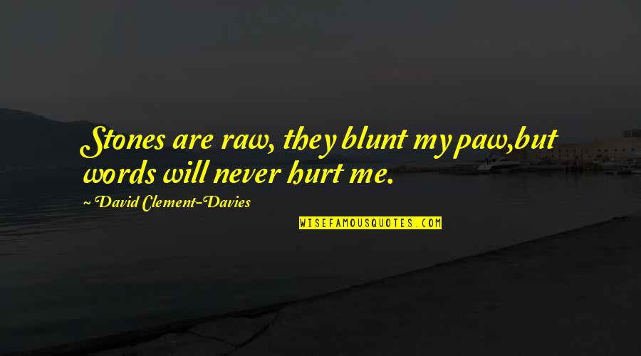 Your Words Will Never Hurt Me Quotes By David Clement-Davies: Stones are raw, they blunt my paw,but words
