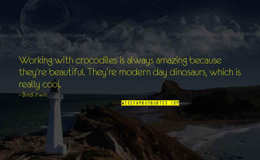 You're Amazing Because Quotes By Bindi Irwin: Working with crocodiles is always amazing because they're