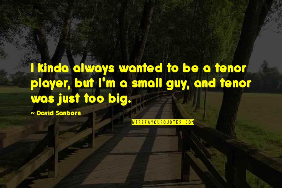 You're Just A Player Quotes By David Sanborn: I kinda always wanted to be a tenor