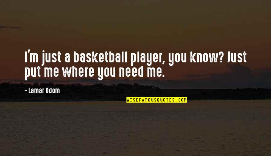 You're Just A Player Quotes By Lamar Odom: I'm just a basketball player, you know? Just
