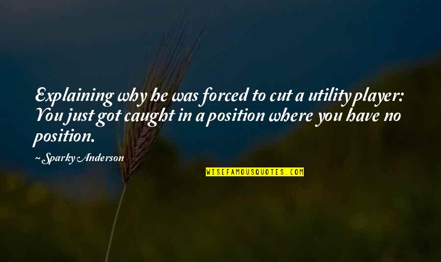 You're Just A Player Quotes By Sparky Anderson: Explaining why he was forced to cut a