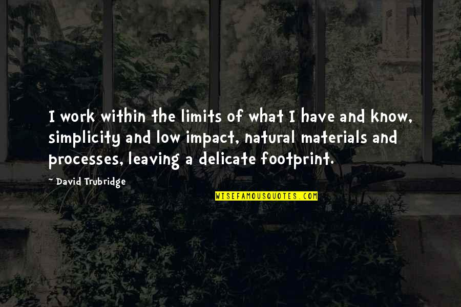 You're Leaving Work Quotes By David Trubridge: I work within the limits of what I