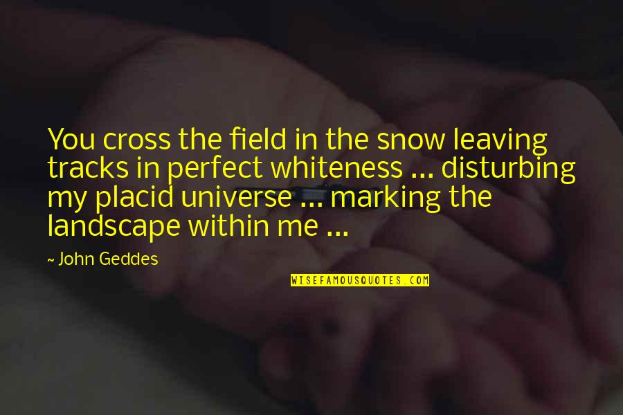 You're My Universe Quotes By John Geddes: You cross the field in the snow leaving