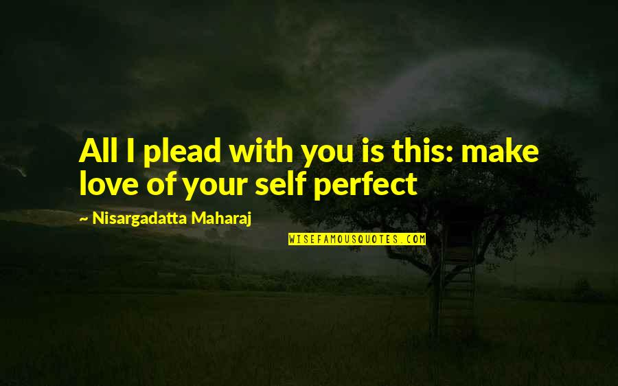 You're Not Perfect But I Love You Quotes By Nisargadatta Maharaj: All I plead with you is this: make