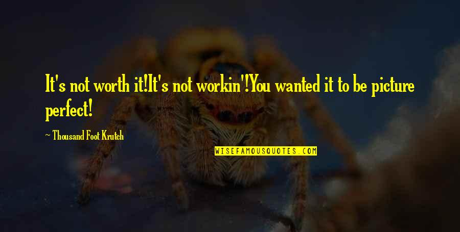 You're Not Perfect But You're Worth It Quotes By Thousand Foot Krutch: It's not worth it!It's not workin'!You wanted it