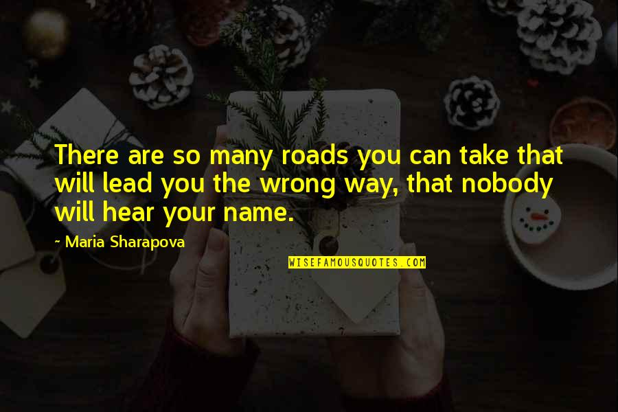 You're So Wrong Quotes By Maria Sharapova: There are so many roads you can take
